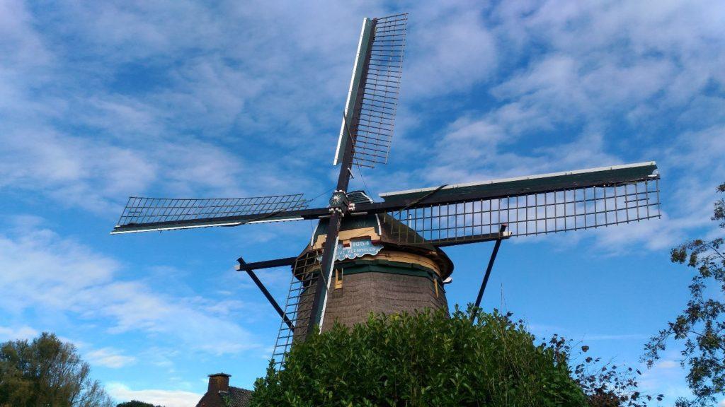 英語が話せるオランダの環境