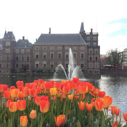 世界一幸せな子ども達 オランダ